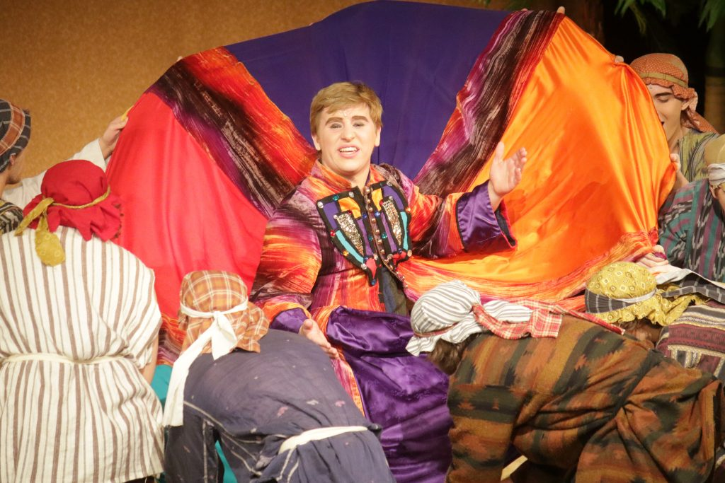 Photo of lead actor during Joseph and the Amazing Technicolor Dreamcoat